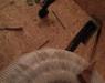 16 Der Holzpelletbunker von Innen